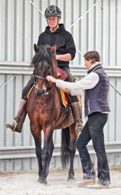 Anke Hawke teaching dressage to horse and rider