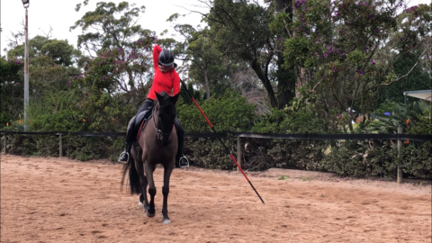 balanced rider with a pole/ garrocha back turn